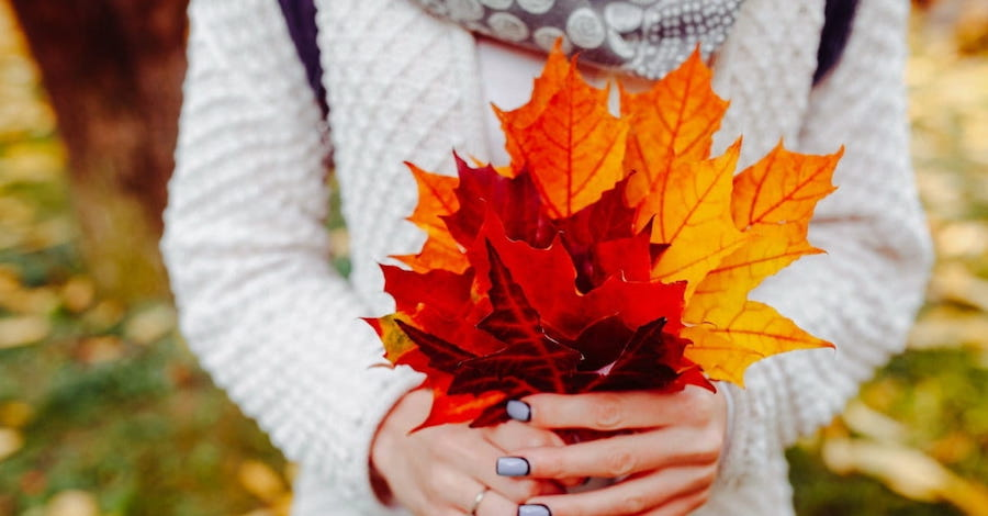 Hands Holding Fall Leaves
